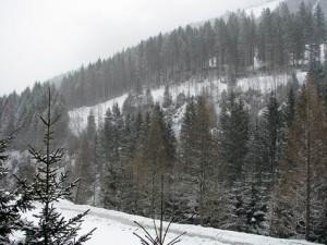 Бад Гаштайн Австрия