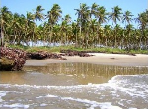 Пляжная романтика Гоа